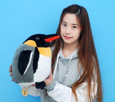 娃娃夢幻樂園~超萌企鵝娃娃~國王企鵝玩偶~35cm~企鵝抱枕娃娃~生日禮物~全省宅配