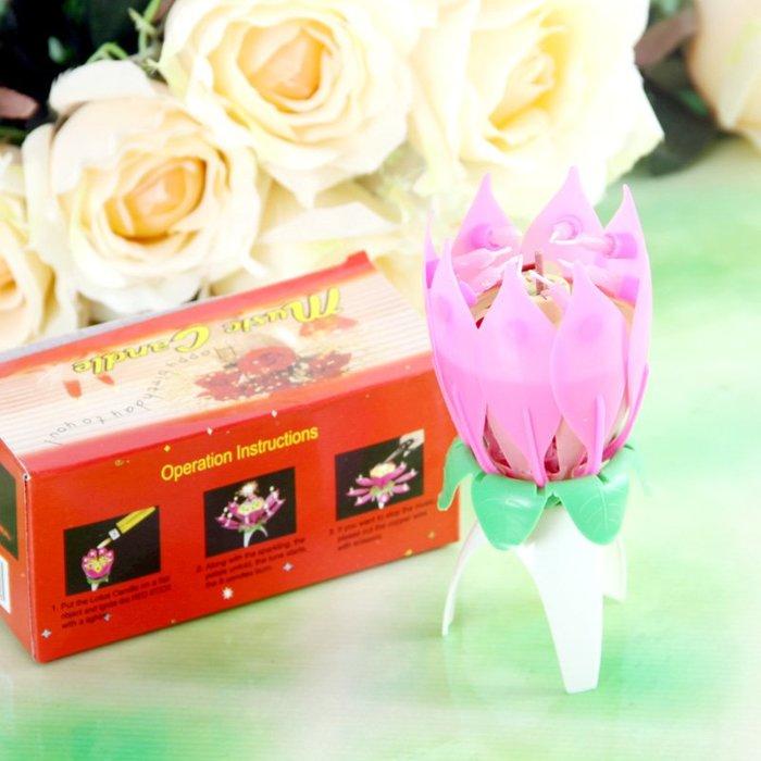 新品上市#創意生日蠟燭 音樂蠟燭/浪漫燭光/單層荷花 自動開花 廠家直銷