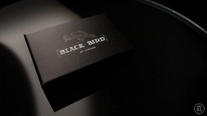 【天天魔法】【S1006】正宗原廠~黑鳥(硬幣儲藏室)~Blackbird by Jeff Copeland