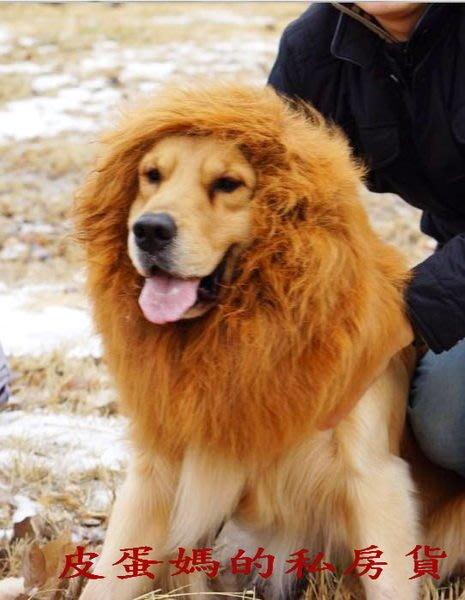 【皮蛋媽的私房貨】DEC0054 變身頭套 寵物變身帽-動物帽-獅子王/獅子帽/獅子頭套-拉不拉多/柴犬/黃金-狗假髮