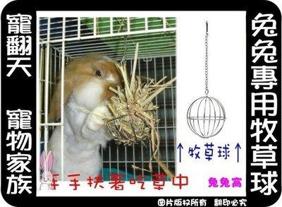 中和寵翻天寵物家族☆兔兔專用牧草球-來店自取歡迎刷卡-周一公休