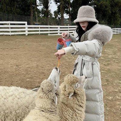 羽絨外套 優質版 顯瘦質感加厚 保暖冬...