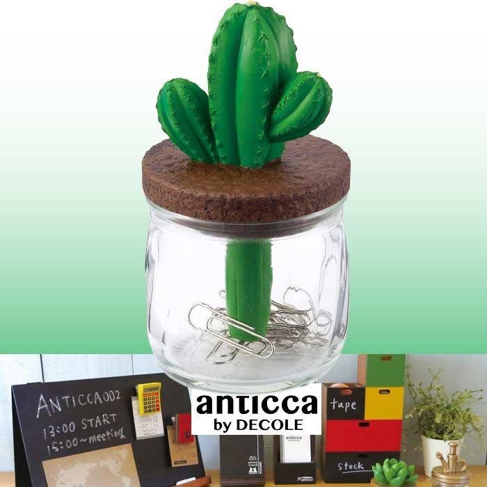 《Cat Sky》日本進口DECOLE  Anticca仙人掌.多肉植物.迴紋針.收納罐(單個390元)