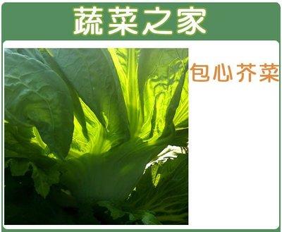 【蔬菜之家】A26.包心芥菜(長年菜)...