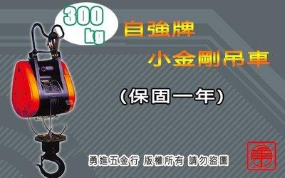 台灣製造 自強牌 300KG 小金鋼吊車 鋼索式 電動吊車 高樓小吊車 吊磚機 捲揚機 DUKE 基業牌 吊快牌 小金剛