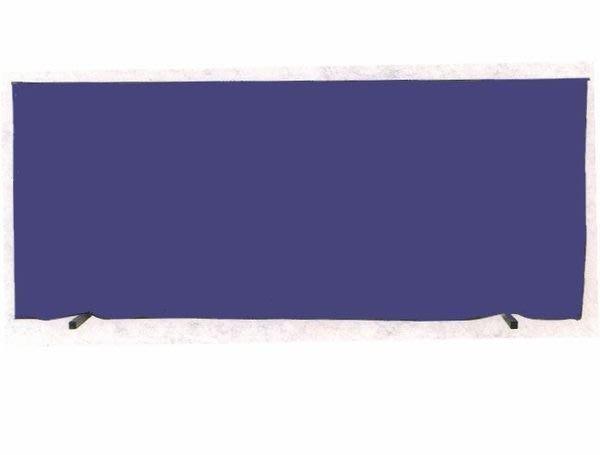 (買家樂廣場)桌球場專用圍布架 (擋球架) (200*76公分)