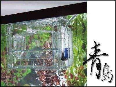 A。青島水族。CH221265美國TOM湯姆-多功能產卵盒(水中繁殖盒)