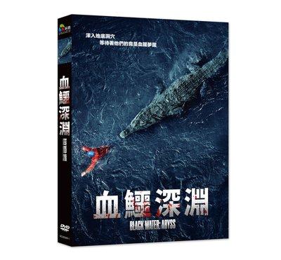 [影音雜貨店] 台聖出品 – 西洋熱門電影 – 血鱷深淵 DVD – 潔西卡麥克納米、路克米歇爾 主演 – 全新正版