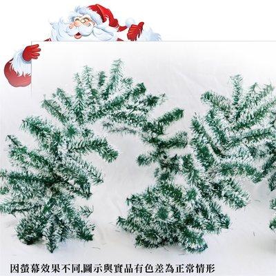 聖誕樹藤 雪花款  約270cm 裸樹...