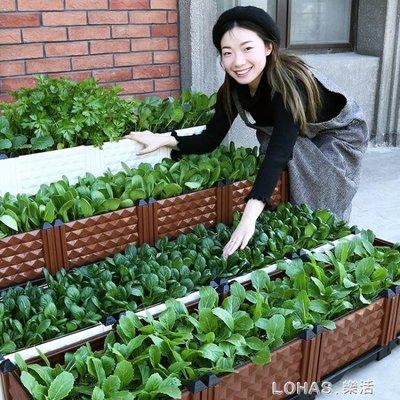 現貨 種菜盆種植箱陽台室內種菜神器長方形種樹盆葡萄家庭花盆露台樓頂