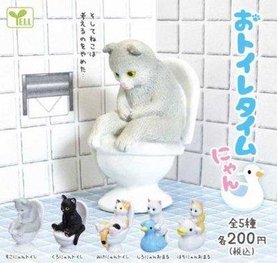 全新現貨 YELL 便器貓 扭蛋 轉蛋 貓咪 上廁所時光 馬桶 全5種 喵咪 公仔 三花 黑貓