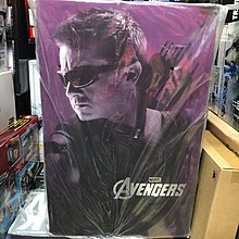Hot Toys Hottoys MMS172 Avengers 復仇者聯盟 Hawkeye 鷹眼 全新