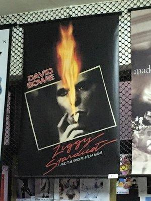 電影海報掛軸 C-05 DAVID BOWIE POSTER Ziggy Stardust 60 x 90 cm 全新