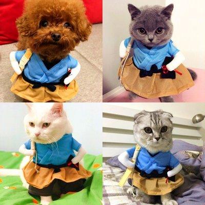 寵物衣服 貓咪狗狗衣服 鞋子 雨衣夏裝薄款抖音同款搞笑寵物直立變身裝貓咪衣服狗狗搞怪貓英短可愛
