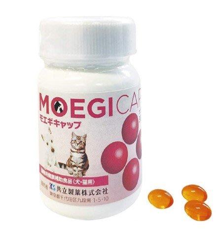 日本原廠 貝節益  (膠囊)30顆