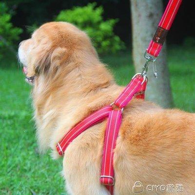 日和生活館 結實狗鏈子狗牽引繩胸背帶遛狗繩子薩摩耶金毛中大型犬寵物用品S686