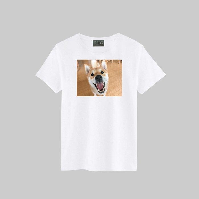 T365 柴犬 柴柴 汪星人 凝視 相片 狗狗 T恤 男女可穿 多色同款可選 短T 素T 素踢 TEE 短袖 上衣 棉T
