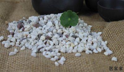雨花石 底砂 砂石 造景 裝飾 灰白色大中小號石子鵝卵石石頭園藝用石水培植物媒介天然石子石頭