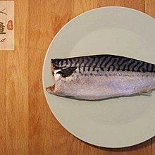 【禧福水產】200g 挪威鯖魚 20片 專用賣場