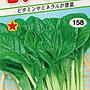 【1磅裝蔬菜種子】維他命菜~  富含維他命的健...