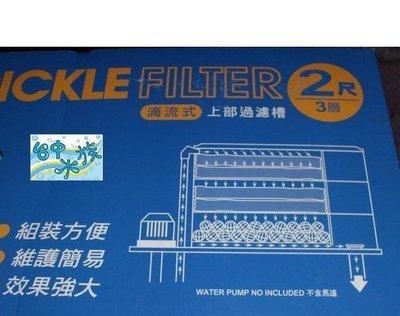 [台中水族] 伸縮式壓克力(2尺-3尺)三層滴流過濾槽(內附濾材) (不含馬達) 促銷價