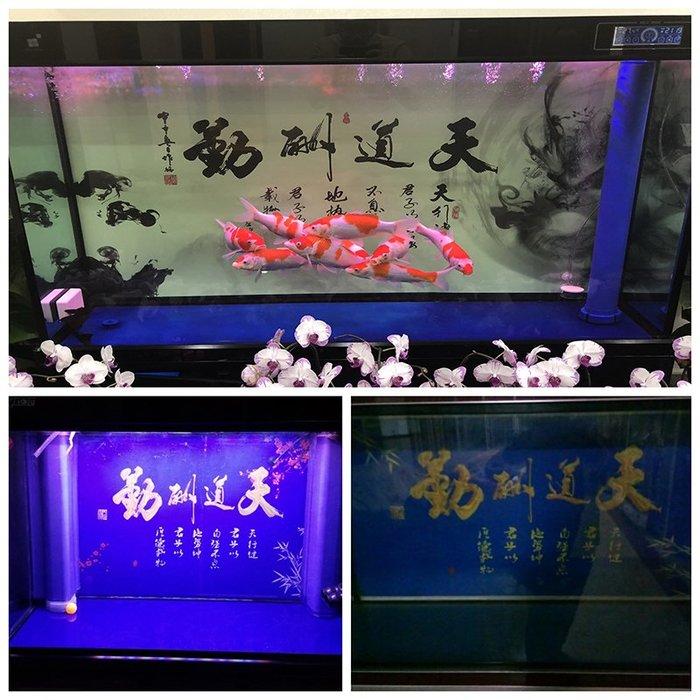 熱賣定做3d立體魚缸背景紙龍圖裝飾造景高清水族箱背景畫壁紙裝飾品制#背景紙#高清#水族用品