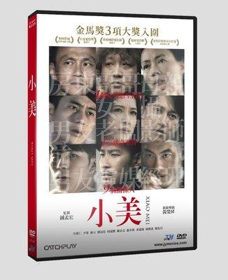 [影音雜貨店] 台聖出品 – 小美 DVD – 由吳慷仁、尹馨、劉冠廷、柯淑勤主演 – 全新正版
