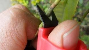 [樂農農] V型 採摘刀/採摘戒/手指刀