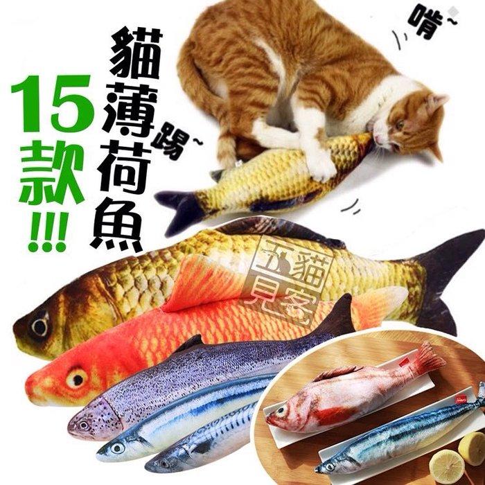 貓紓壓【貓薄荷魚抱枕60cm】貓草包 貓草魚 貓薄荷 貓草 貓玩具 貓草魚玩具 貓咪玩具 貓薄荷玩具 寵物玩具 五貓見客