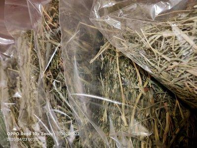 兔兔草試吃包