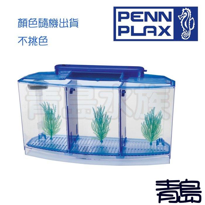 Y。。。青島水族。。。BBT4S美國PENN-PLAX龐貝-VENY'S鬥魚缸/隔離盒(快速排換水) 三格=LED三槽