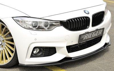 【樂駒】RIEGER BMW F32 F33 F36 M-Technic 前擾流 前下巴  ABS 素材 需烤漆