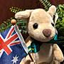 澳洲袋鼠娃娃(國旗綠緞帶版)澳洲製造...