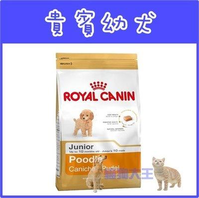 **貓狗大王**法國皇家《貴賓幼犬飼料PRPJ33》3kg