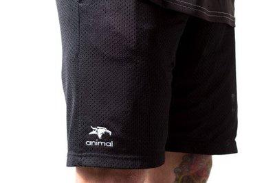 [Spun Shop] Animal Champion Shorts 聯名短褲