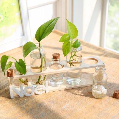 水培綠蘿餐桌客廳裝飾實木架玻璃花器擺件 透明玻璃小花瓶花插    全館免運