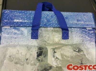 COSTCO好市多 保冷購物袋 保冷保溫5小時 防水 大容量 購物旅遊-吉兒好市多COSTCO代購