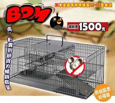【BOM】全新第三代老鼠終結者最佳捕鼠器老鼠籠不是滅鼠器及超音波驅鼠器 ※現貨供應※