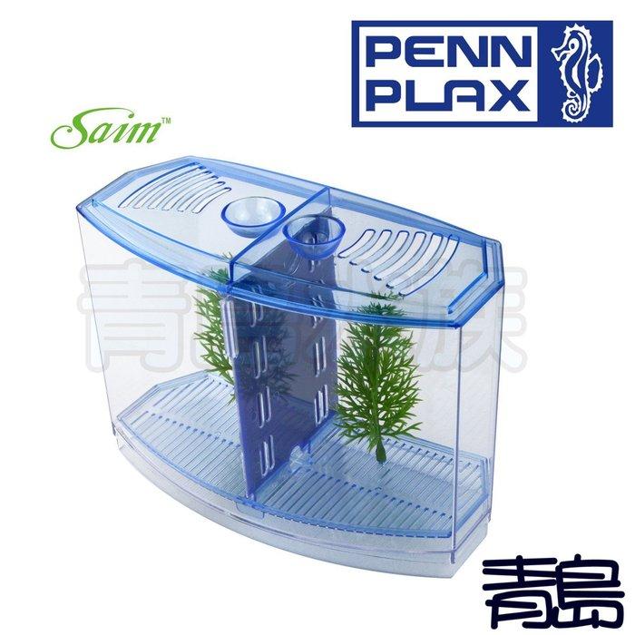 Y。。。青島水族。。。BBT3S美國PENN-PLAX龐貝-VENY'S-迷你鬥魚缸/隔離盒(快速排換水)鬥魚缸=雙槽