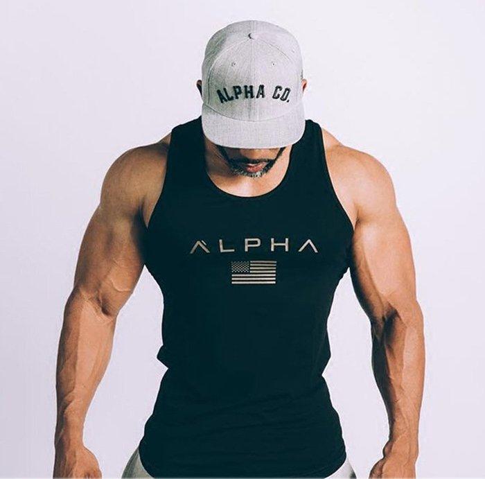 X102 脫褲價 完美版型 彈性貼身 健身背心 重訓背心 運動背心 運動服飾 健身服飾 背心男生 ALP