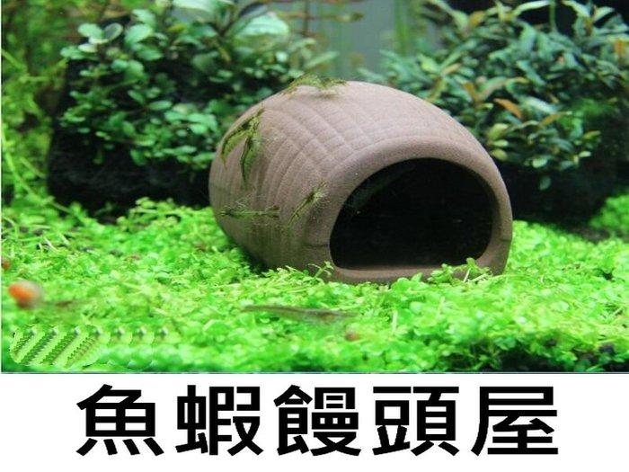 魚蝦 螯蝦 繁殖 躲藏 多功能陶瓷甕 紫砂陶罐 饅頭屋造型