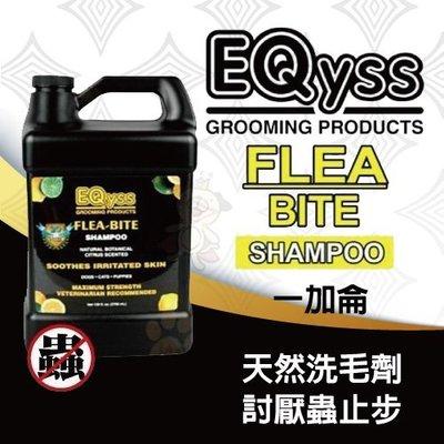 *WANG*【含運】美國EQYSS  Flea-Bite Shampoo 除蚤洗毛精(一加侖)