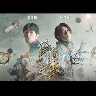 全新聲林之王蕭敬騰林宥嘉印刷簽名海報很大張