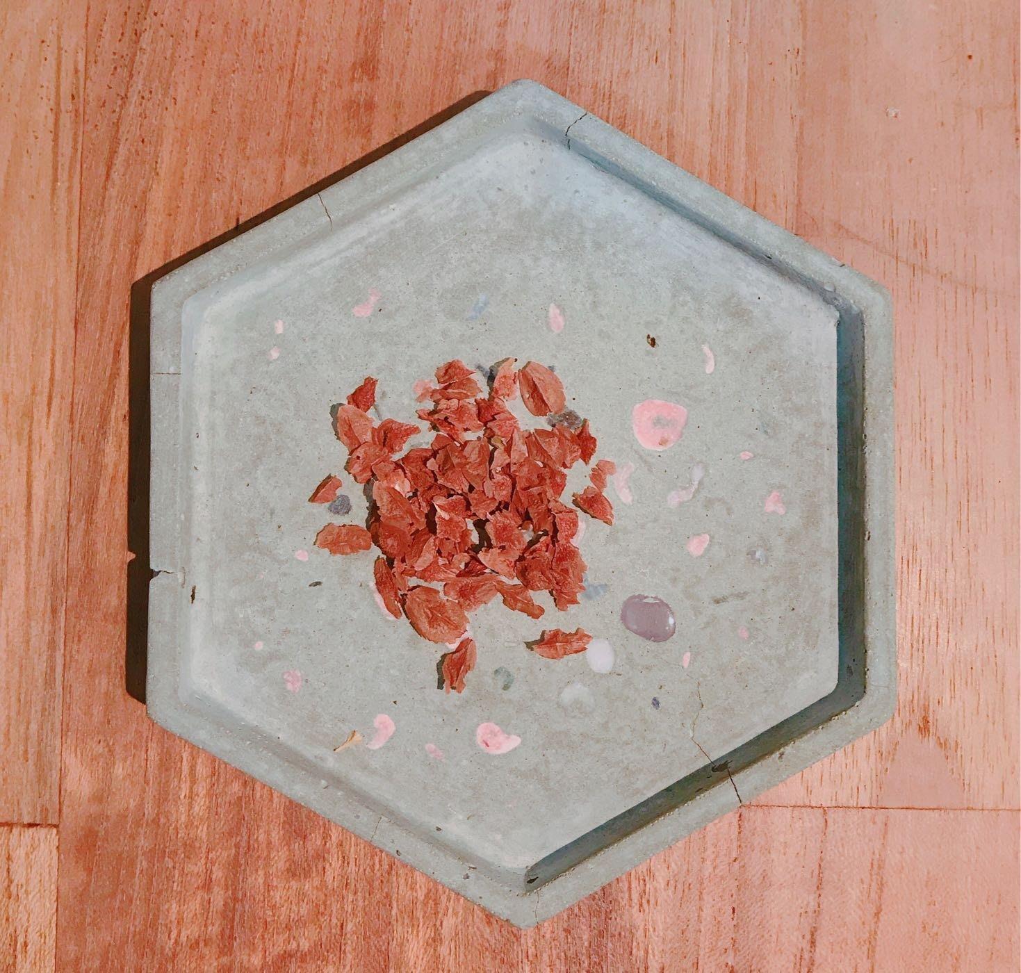 Boswellia sacra神聖乳香/阿曼乳香/薩克拉乳香,種子 一份10顆