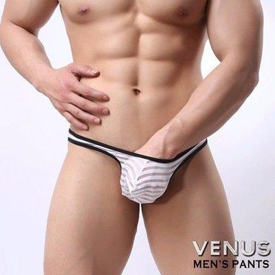VENUS 低腰性感 透明 囊袋款 丁字褲 白