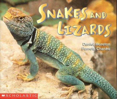 英文童書繪讀本 Snakes and Lizards 《Scholastic 》 原價114元 書況優