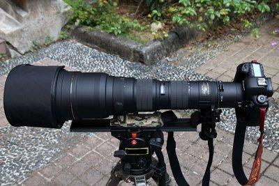【代售】Sigma 300-800mm  HSM EX DG 超望遠變焦大砲鏡頭,9成5新,Canon EF接環~