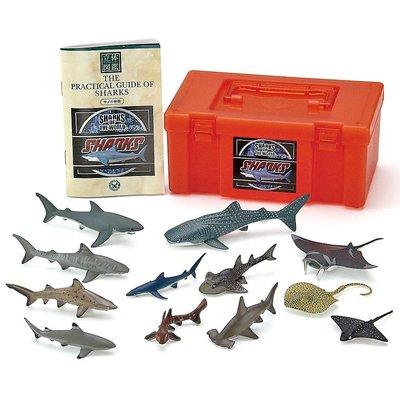 日本正版 立體圖鑑擬真模型BOX 鯊魚 12種組 小模型 小公仔 日本代購
