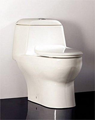 價格保證 HCG 和成牌 和成 麗佳多系列 C899GMUT  防污抗菌 C899 單體省水馬桶 代客安裝 CP值高