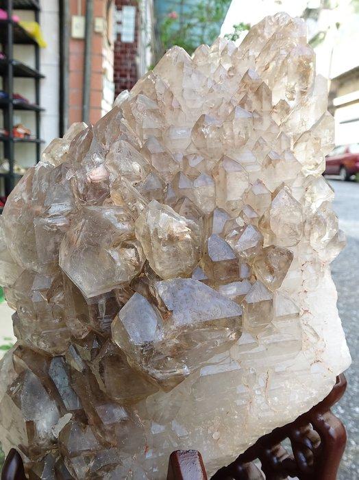 ~shalin-crystal~巴西鱷魚骨幹水晶~6.19公斤~完整度高~除穢聚氣~化煞聚財~低價起標!